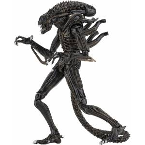 NECA - Ultimate Warrior (1986) Brown - Aliens - Action Figür