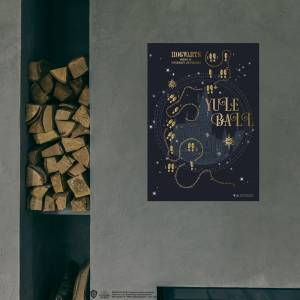 Warner Bros Harry Potter  Hogwarts Yule Ball Poster 50x70 cm
