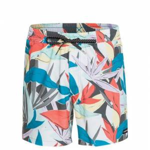 Quiksilver Mystic Session Str 15 Volley Şort